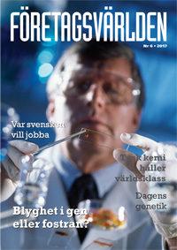 Företagsvärlden nr 6 2017: Swedish Brand Award till IKEA. Håll ditt nyårslöfte – så lyckas du!. Nöjdhetsindex med nordisk dominans